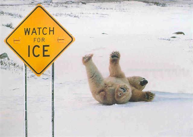 Falling on Ice